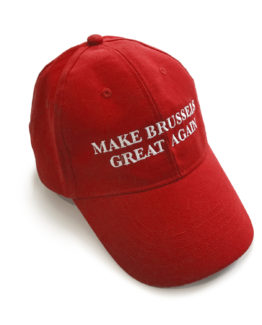 MAKE BRUSSELS GREAT AGAIN - Negentish